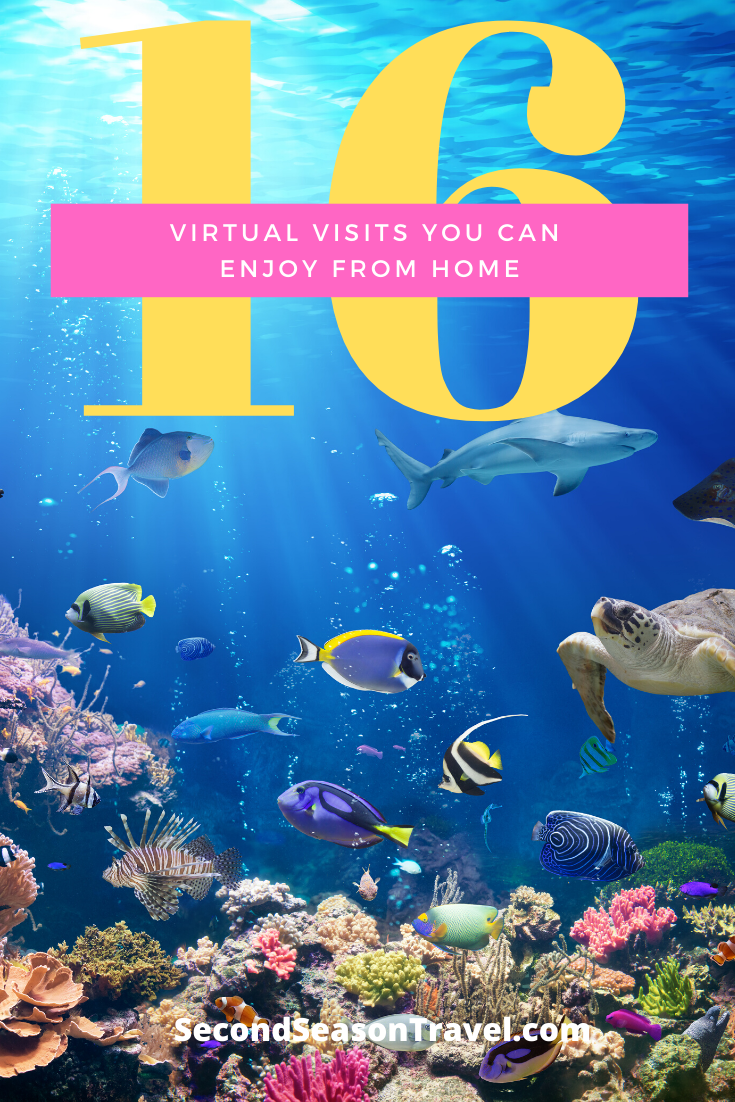 16 Virtual Visits You Can Enjoy From Home